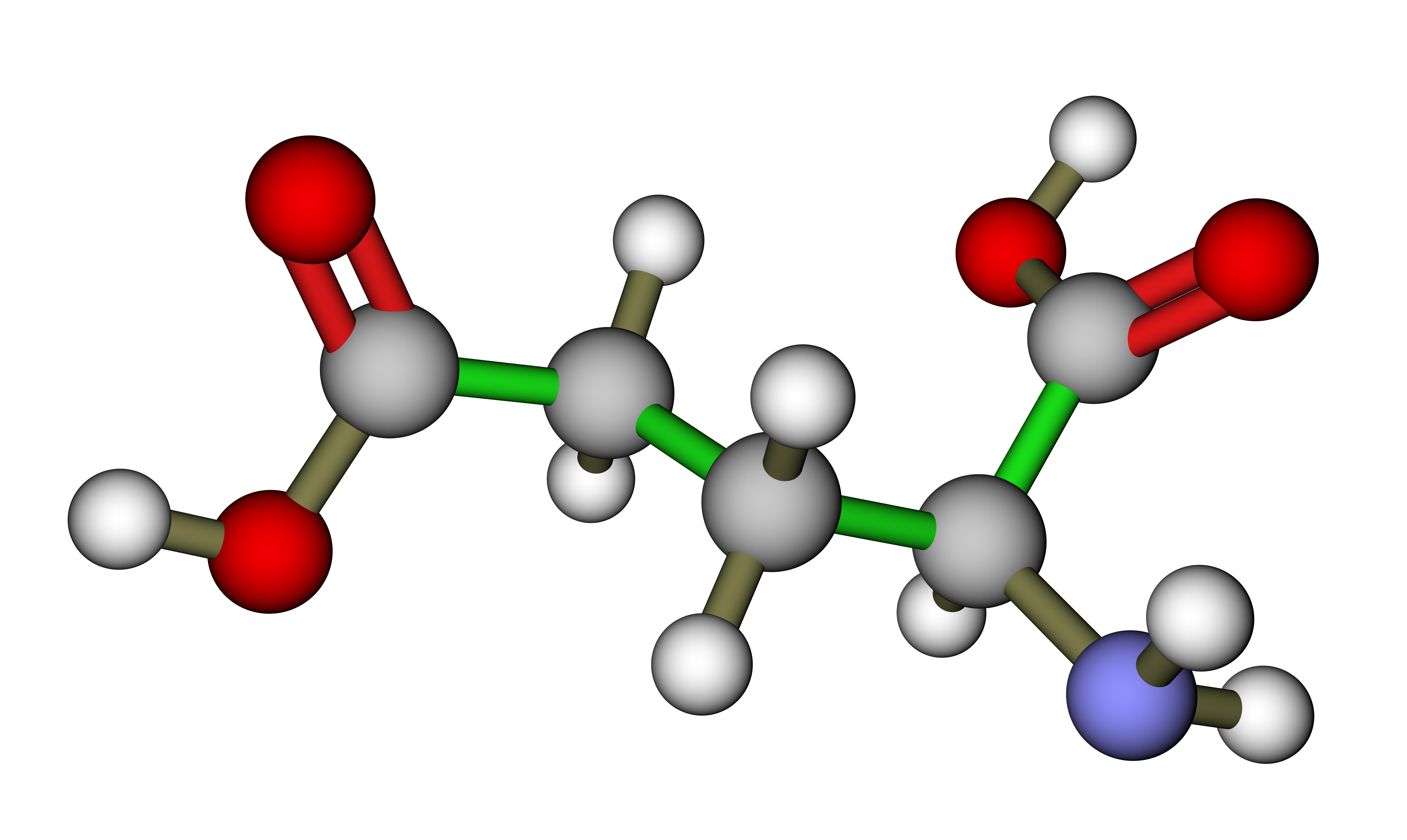 アミノ酸とグルタミン酸