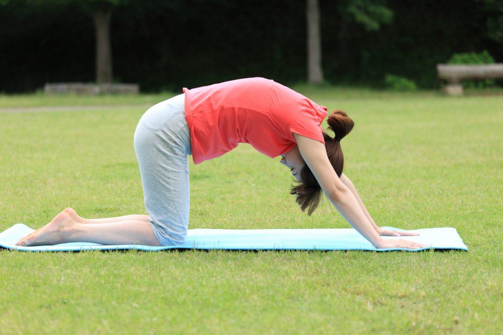 公園で背中のストレッチをする女性