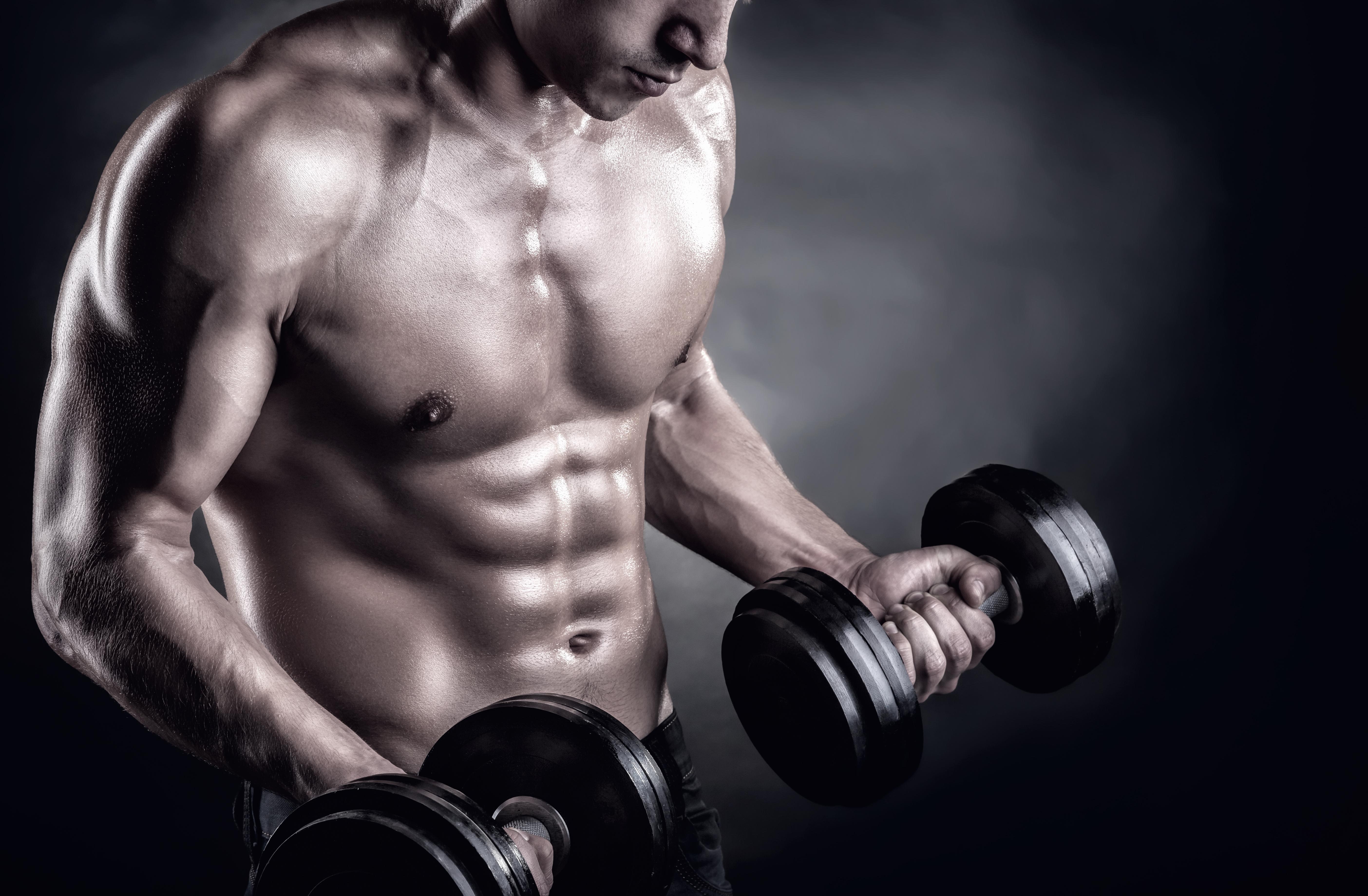 ガクト 筋肉 画像