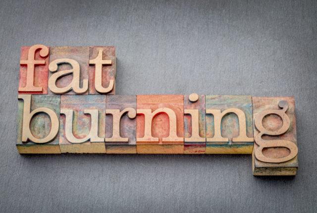 脂肪燃焼ロゴ