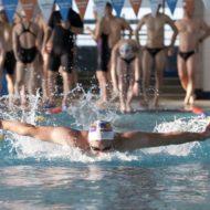 バタフライを泳ぐ男性