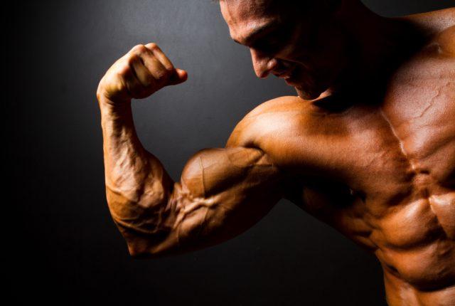 男性の逞しい前腕と二の腕
