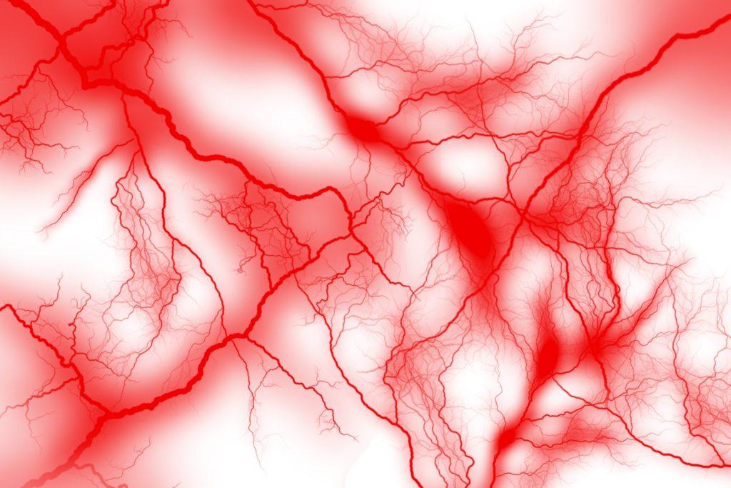 血管の様子
