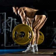 非常にたくましい男のボディービルダー、ジムでの体重行使 デッドリフトを実行