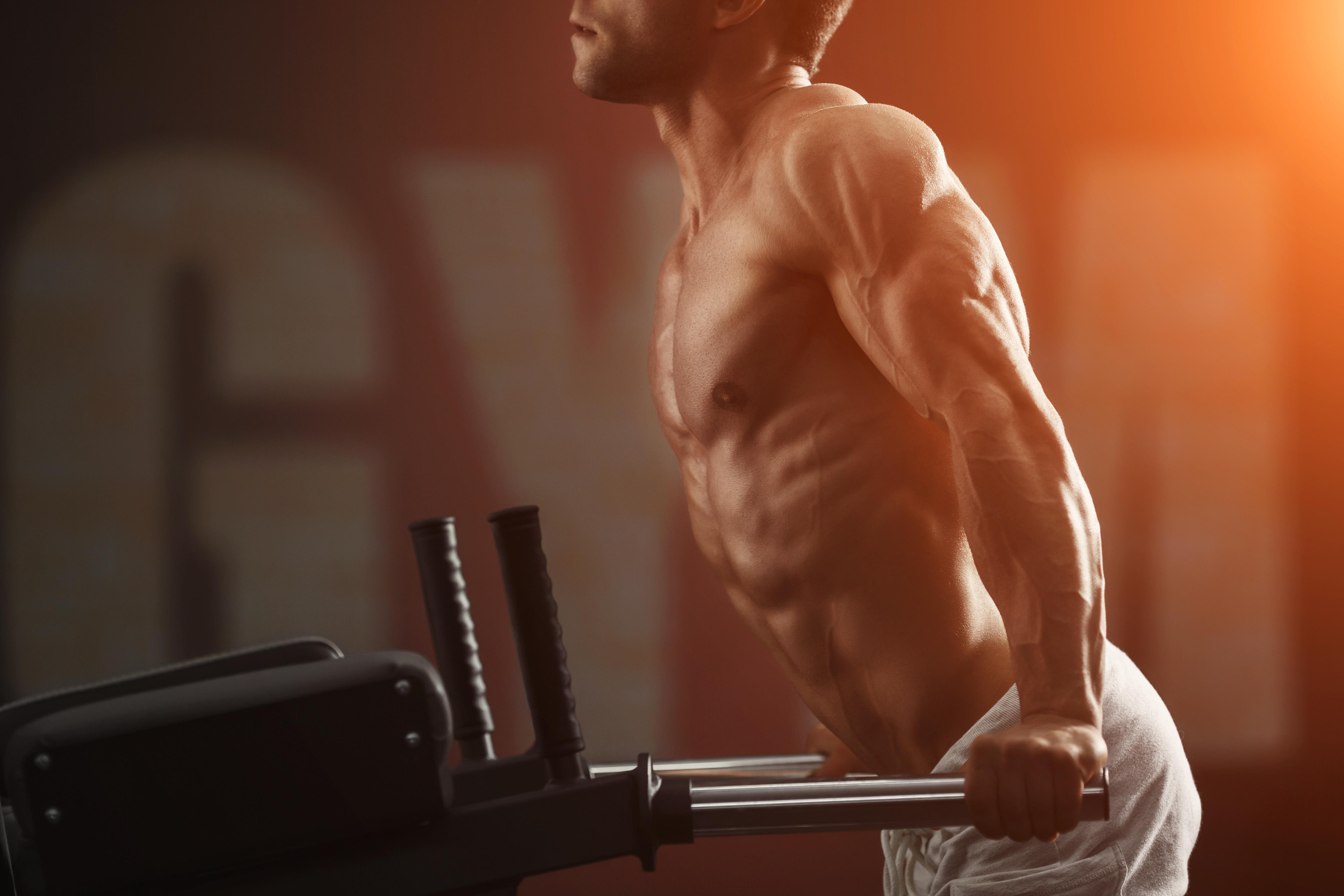 ディップスで筋肉を鍛える男性