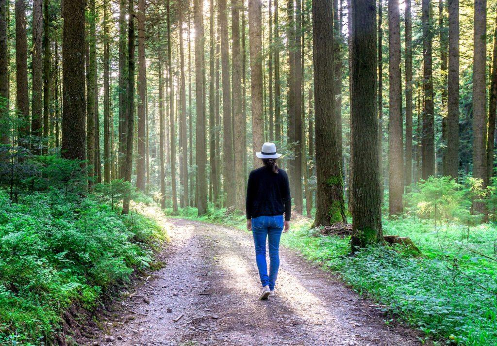 森林をウォーキングする女性の後姿