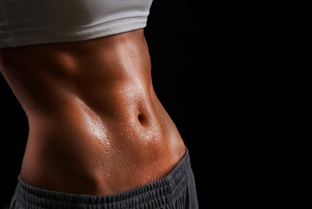 筋肉モデル