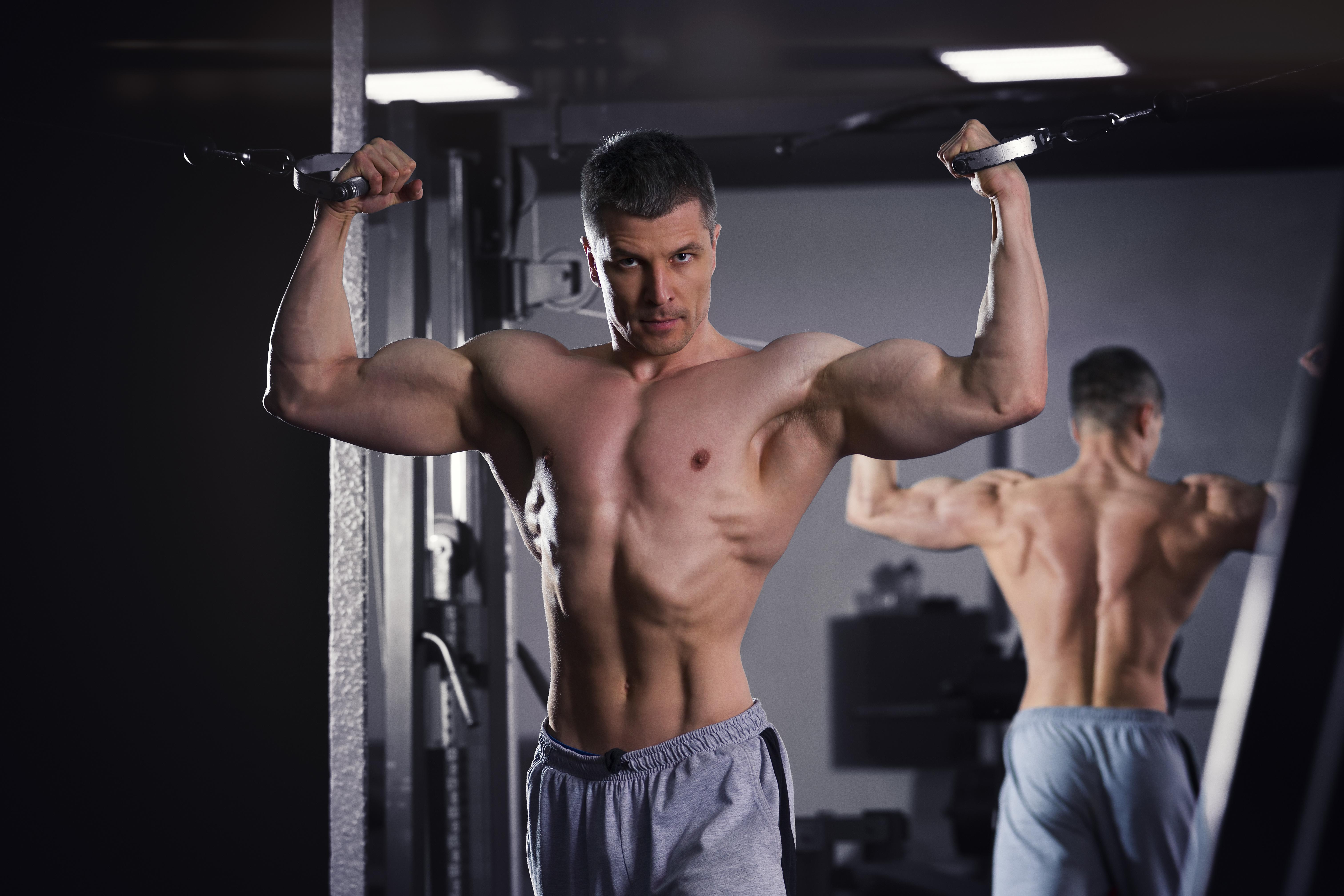 完璧な筋肉男性の体