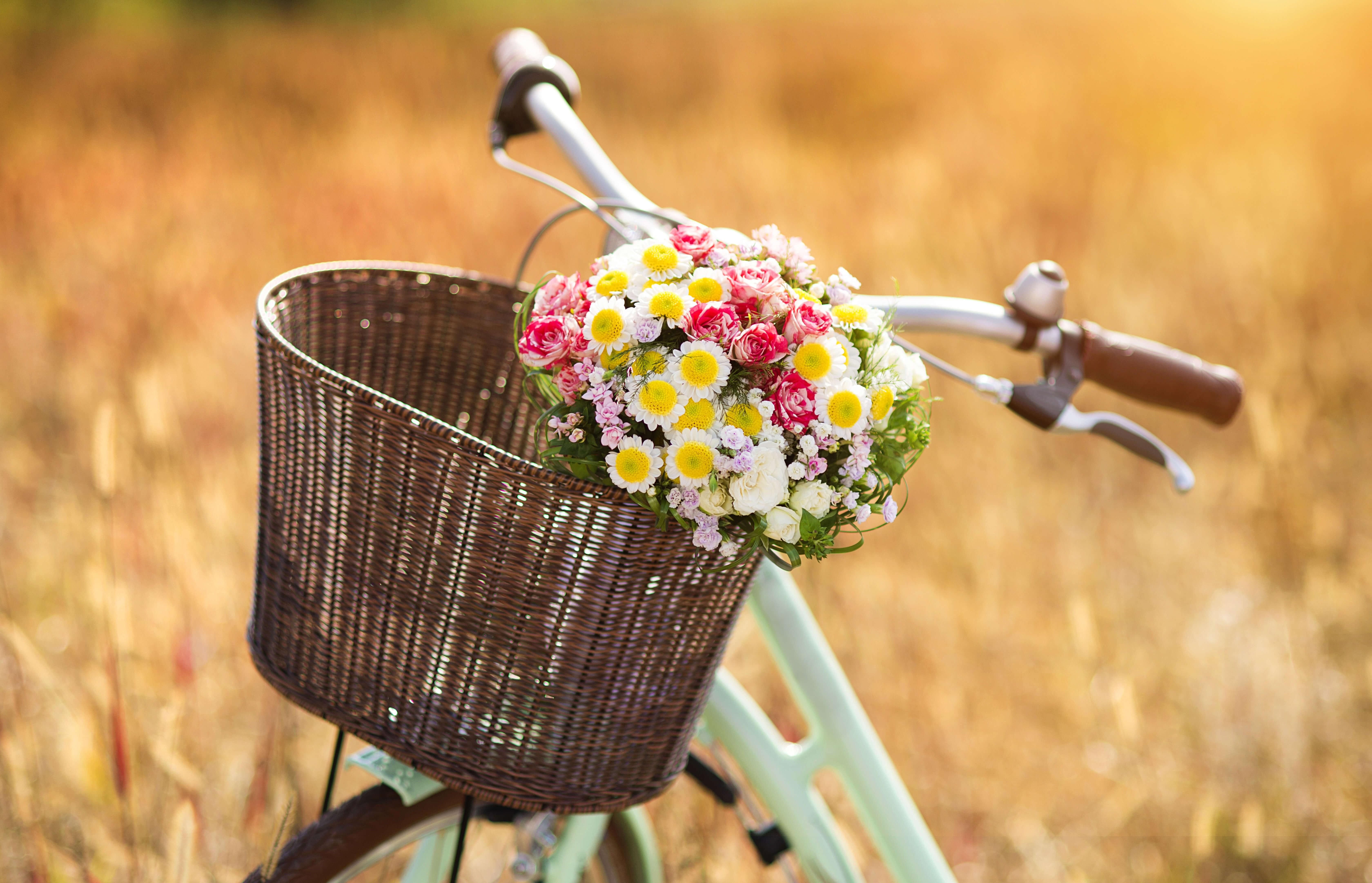 自転車 カゴ