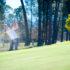 【ゴルフ】ウェッジおすすめ人気ランキング20選を徹底比較!初心者向けの正しい打ち方や角度を教えます!