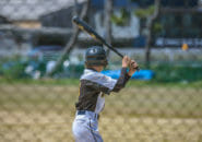 【野球】軟式バットおすすめ人気ランキング10選を徹底比較!M号球に対応しているバットはどれ?【草野球にもおすすめ】